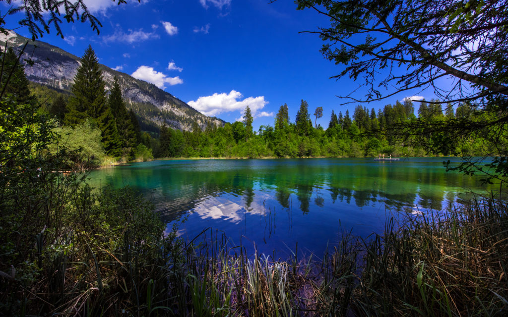 switzerland lake mountains forests crestasee
